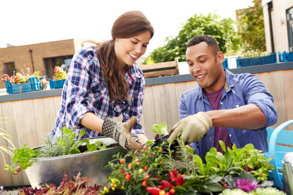 Mixed Race Couple Planting Rooftop Garden Together | How To Be A Better Husband | being a better husband | conversation