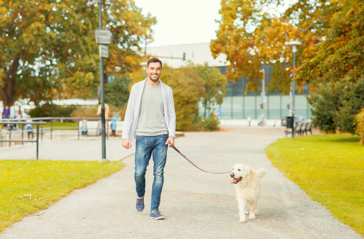 Happy man with labrador retriever dog walking in autumn city park | Tips to Sleep Soundly for Better Productivity | how to get better deep sleep